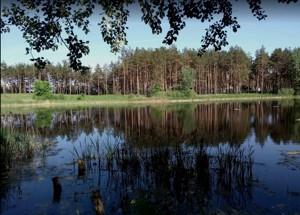 Земельна ділянка Лісова, Таценки, P-29739 - Фото