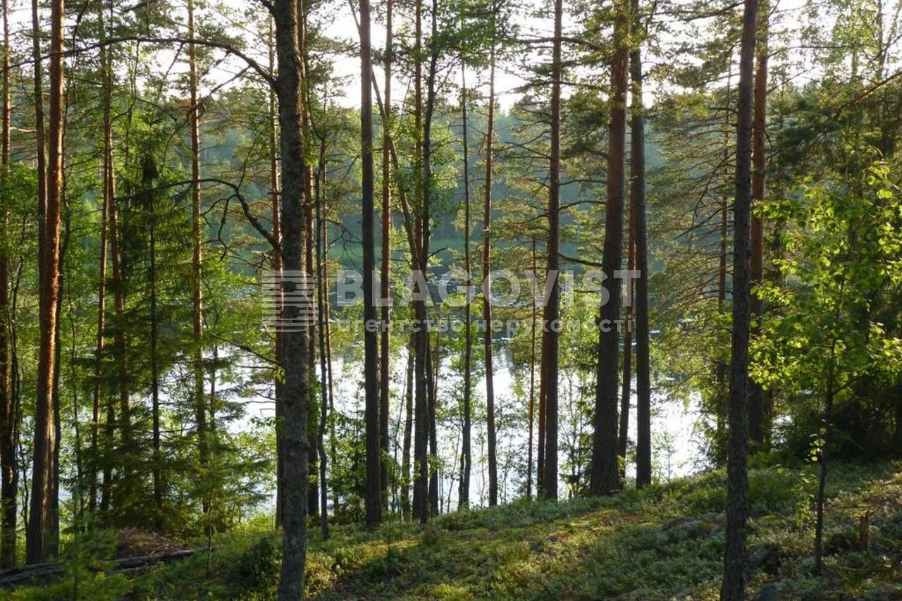 Земельный участок P-29741, Лесная, Таценки - Фото 3