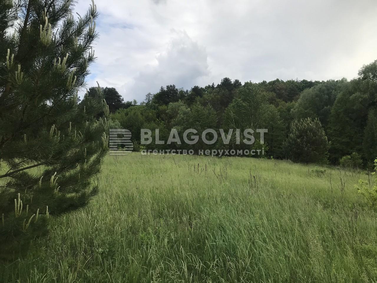Земельный участок A-112325, Большие Дмитровичи - Фото 1