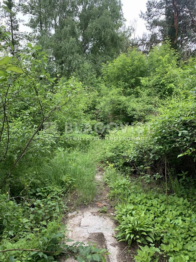 Земельный участок F-44905, Лесная, Романков - Фото 6