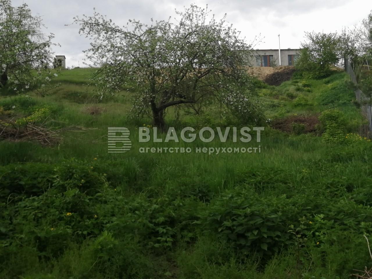 Земельный участок A-111479, Садовая, Ходосовка - Фото 3