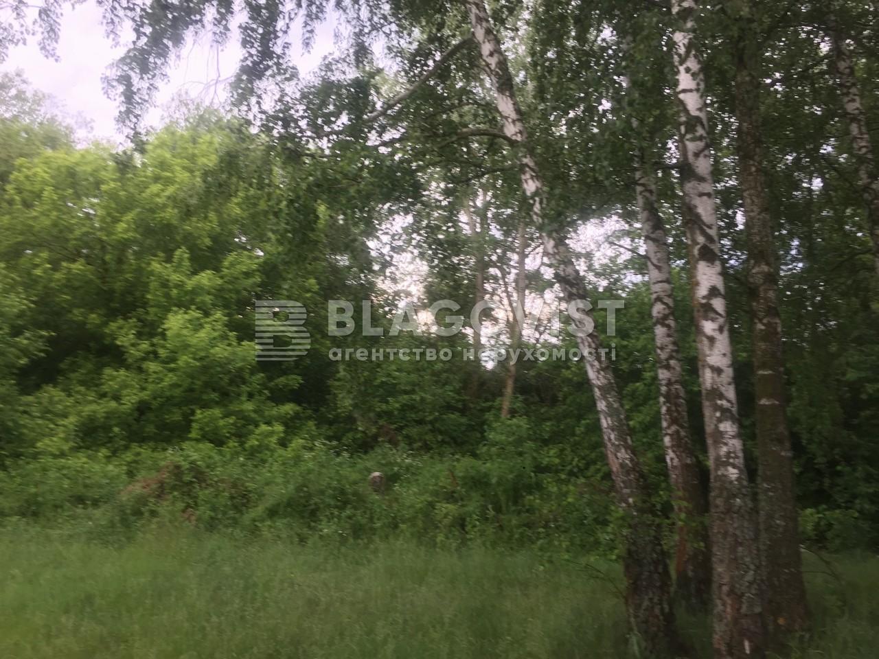 Земельный участок P-29710, Киевская, Старые Безрадичи - Фото 3
