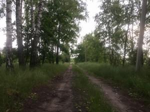 Земельный участок P-29710, Киевская, Старые Безрадичи - Фото 4