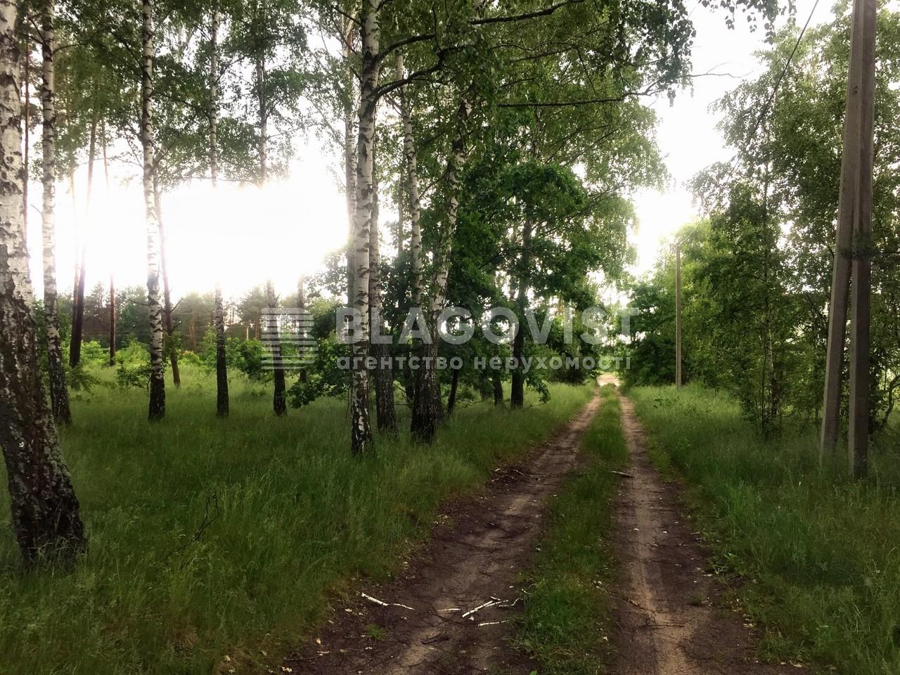 Земельный участок P-29743, Приозерная, Вишенки - Фото 3