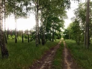 Земельный участок Приозерная, Вишенки, P-29743 - Фото3