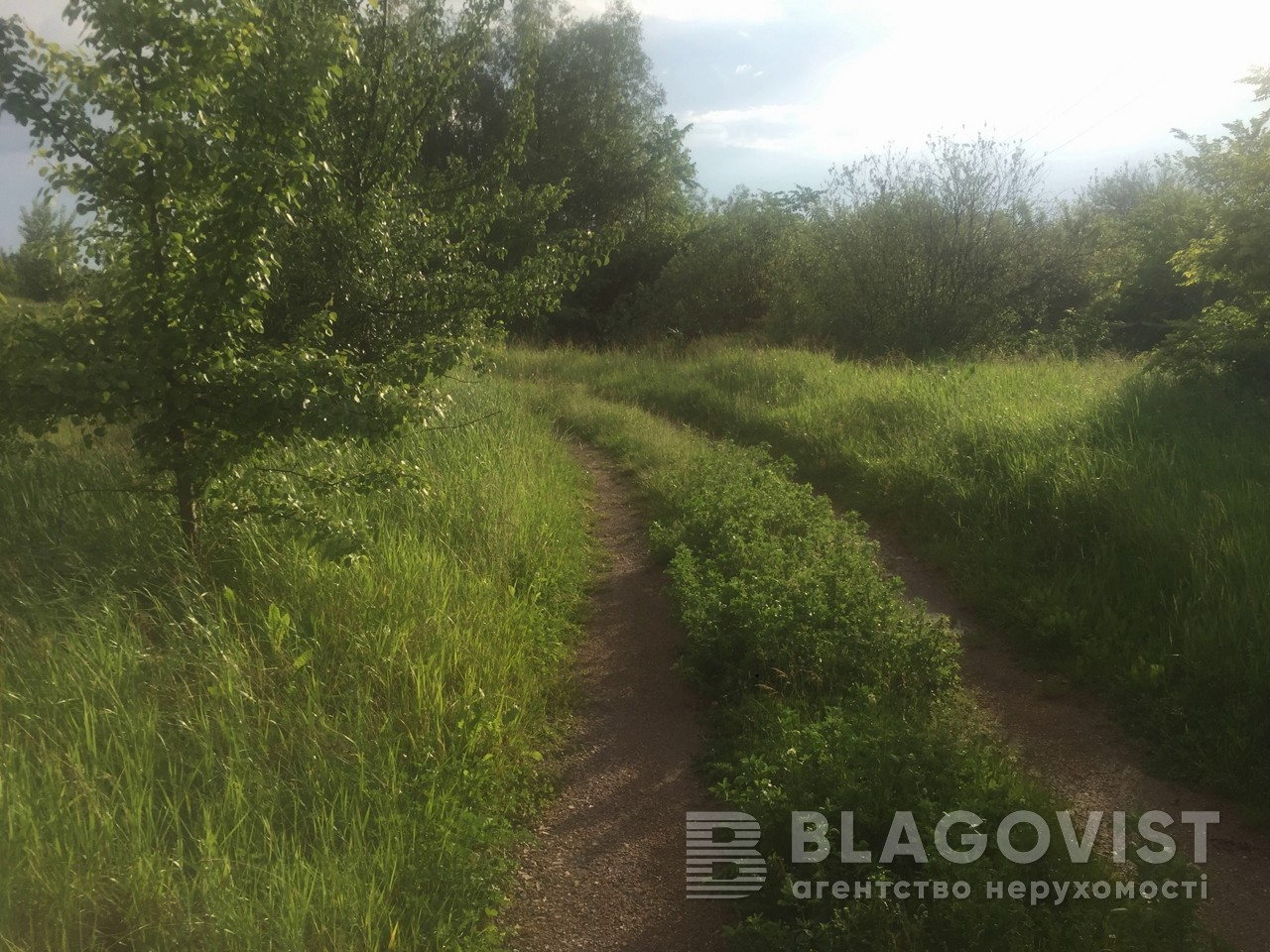 Земельный участок P-29743, Приозерная, Вишенки - Фото 7