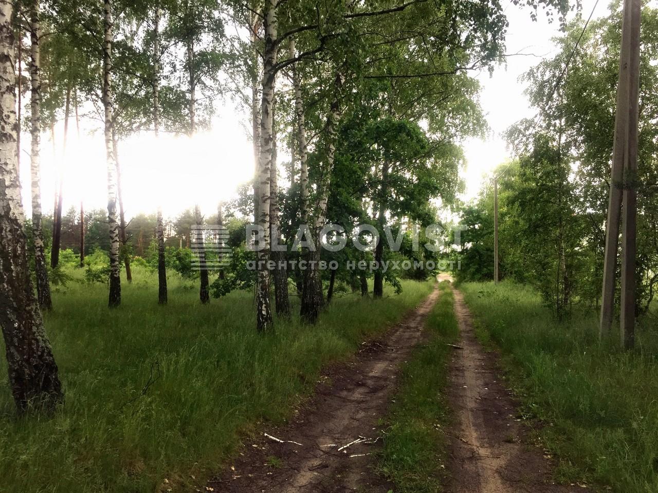Земельный участок P-29744, Приозерная, Вишенки - Фото 1