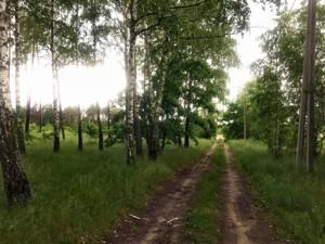 Земельный участок Приозерная, Вишенки, P-29744 - Фото2