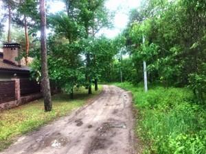 Земельный участок Приозерная, Вишенки, P-29748 - Фото2