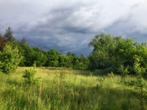 Земельна ділянка Приозерна, Вишеньки, P-29750 - Фото