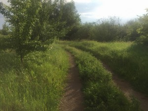 Земельный участок P-29751, Приозерная, Вишенки - Фото 8