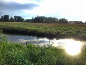 Земельный участок Приозерная, Вишенки, P-29751 - Фото2