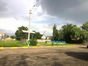 Земельный участок Приозерная, Вишенки, P-29753 - Фото3