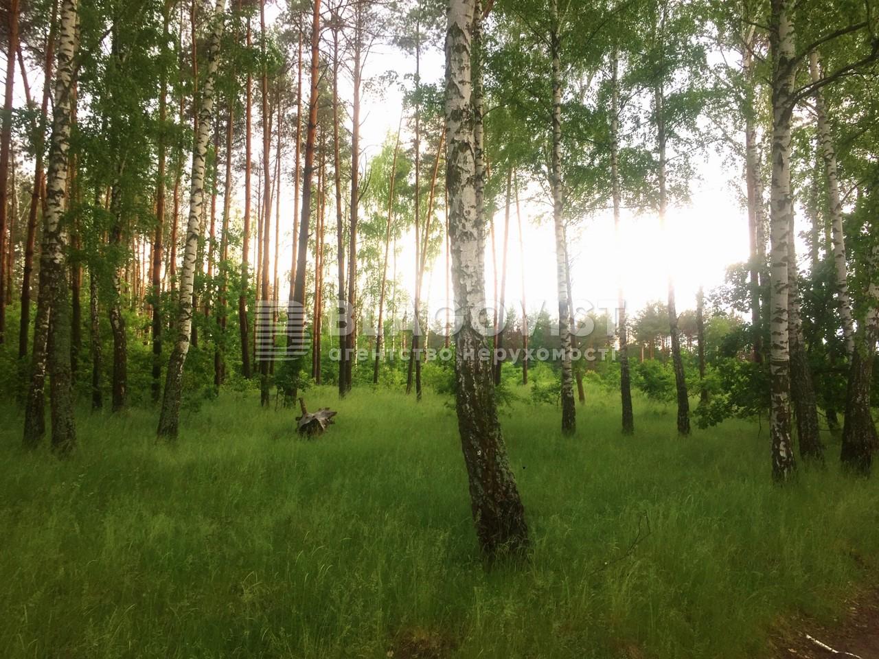 Земельный участок P-29756, Приозерная, Вишенки - Фото 1