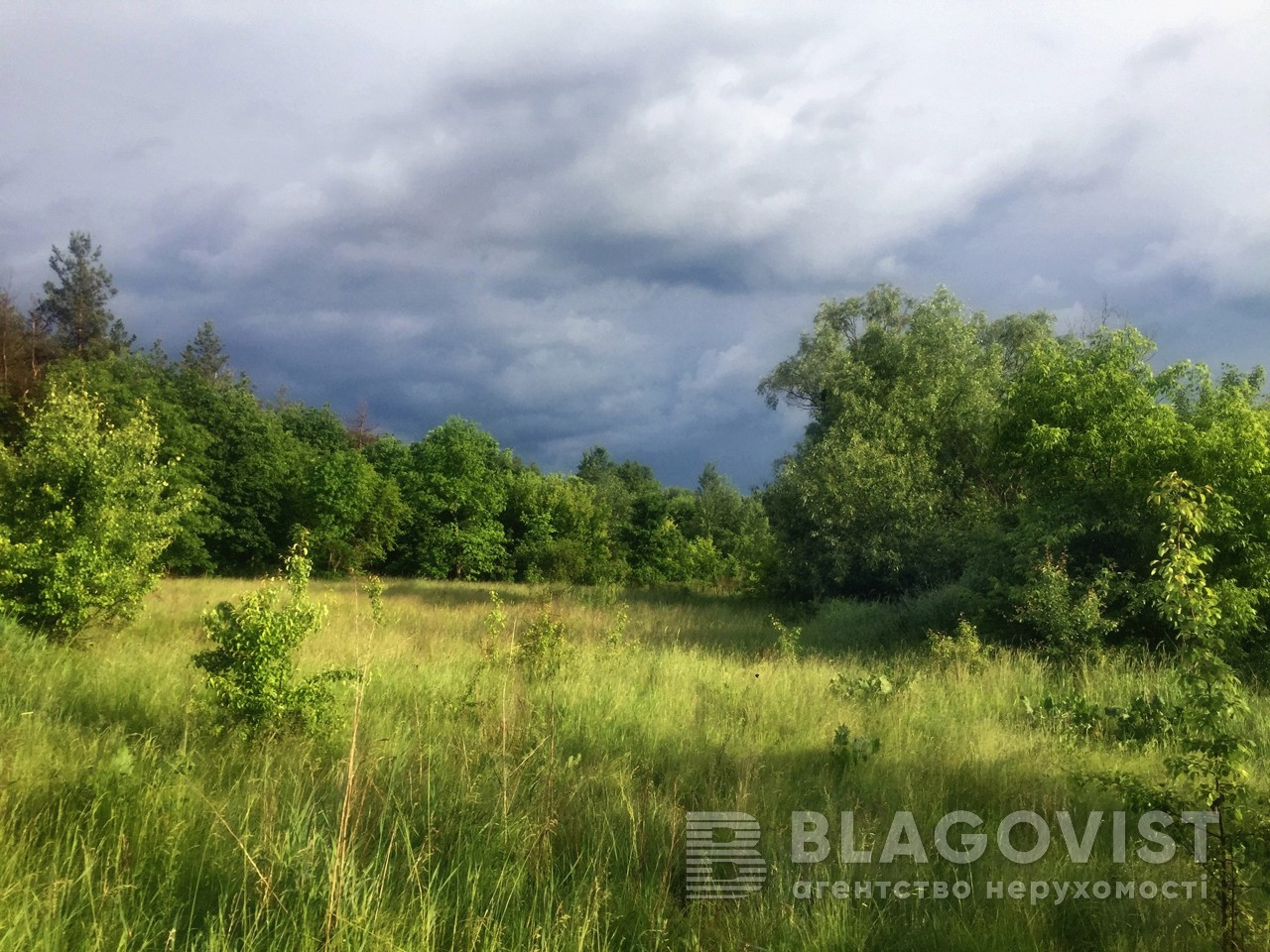 Земельный участок P-29757, Приозерная, Вишенки - Фото 8
