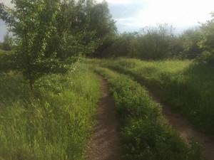 Земельный участок Приозерная, Вишенки, P-29759 - Фото2