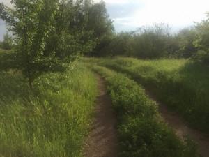 Земельный участок Приозерная, Вишенки, P-29760 - Фото 8