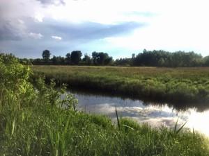 Земельна ділянка Приозерна, Вишеньки, P-29763 - Фото