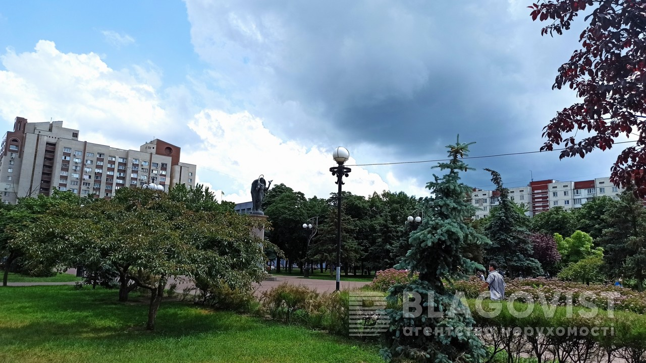 Квартира Z-695244, Оболонский просп., 22в, Киев - Фото 23