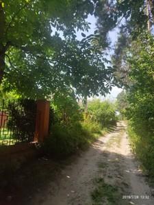 Будинок Лісова, Капітанівка, D-37224 - Фото 20