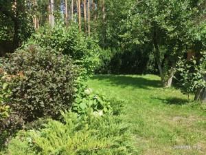 Будинок Лісова, Капітанівка, D-37224 - Фото 19