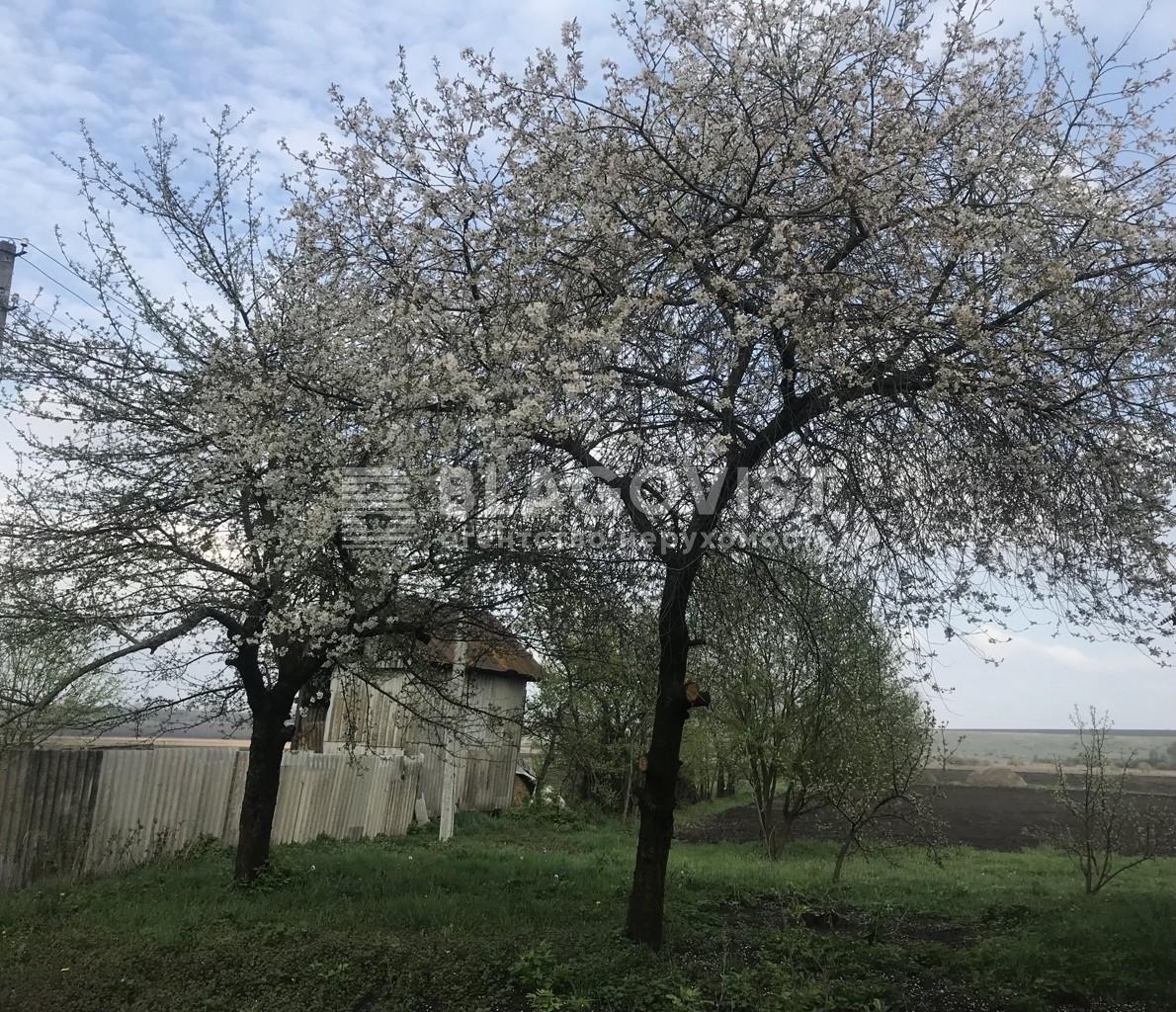 Земельный участок E-41023, Рильского, Дударков - Фото 3