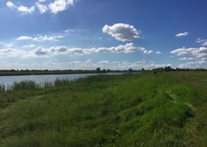 Земельный участок Приозерная, Вишенки, P-29799 - Фото