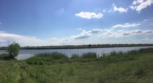 Земельный участок P-29799, Приозерная, Вишенки - Фото 3