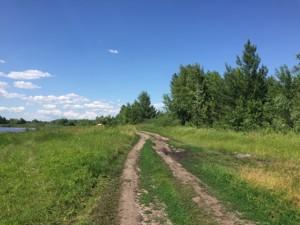 Земельный участок P-29799, Приозерная, Вишенки - Фото 4