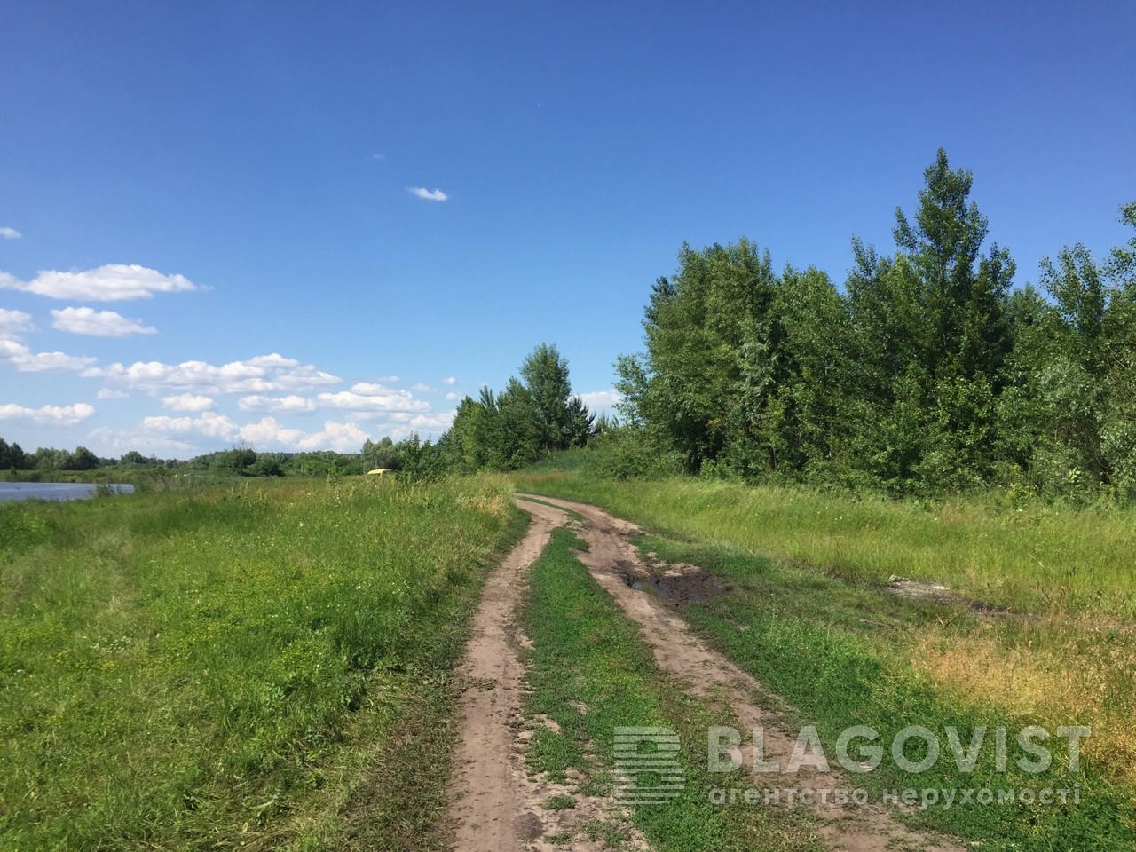 Земельный участок P-29801, Приозерная, Вишенки - Фото 4
