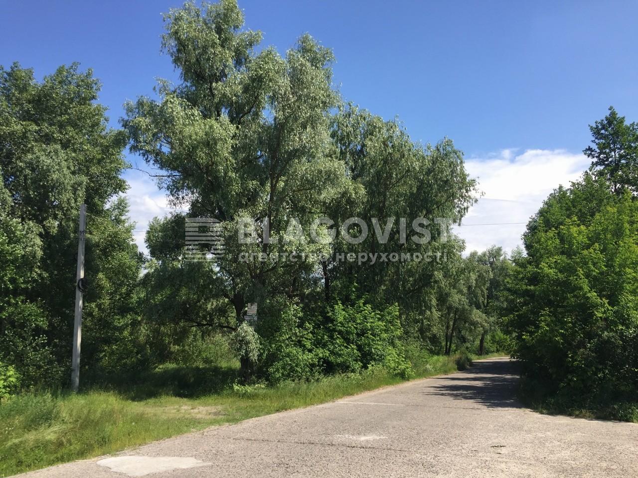 Земельный участок P-29825, Садовая (Осокорки), Киев - Фото 5