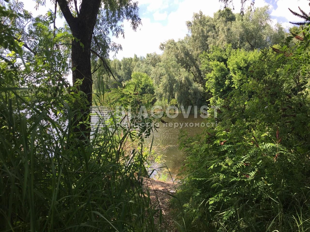 Земельный участок P-29824, Центральная, Киев - Фото 5