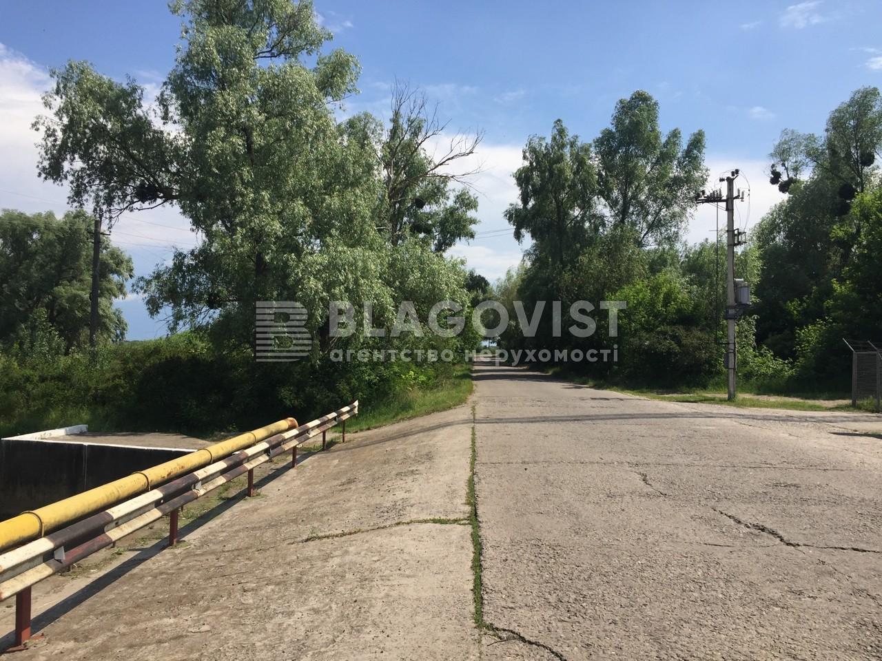 Земельный участок P-29824, Центральная, Киев - Фото 6