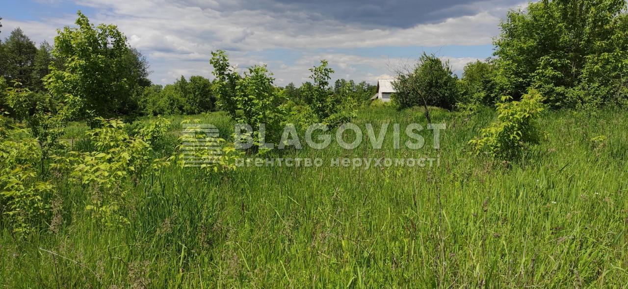 Земельный участок M-39013, Заречная, Грузcкое - Фото 6