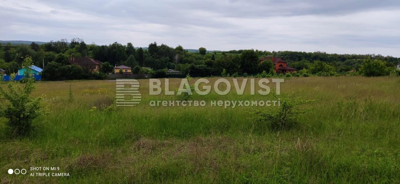 Земельный участок R-39655, Набережная, Старые Безрадичи - Фото 1
