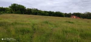 Земельный участок R-39655, Набережная, Старые Безрадичи - Фото 2