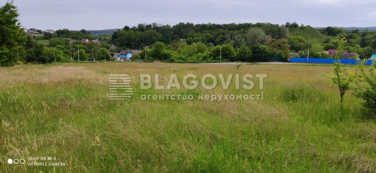 Земельный участок R-39655, Набережная, Старые Безрадичи - Фото 4