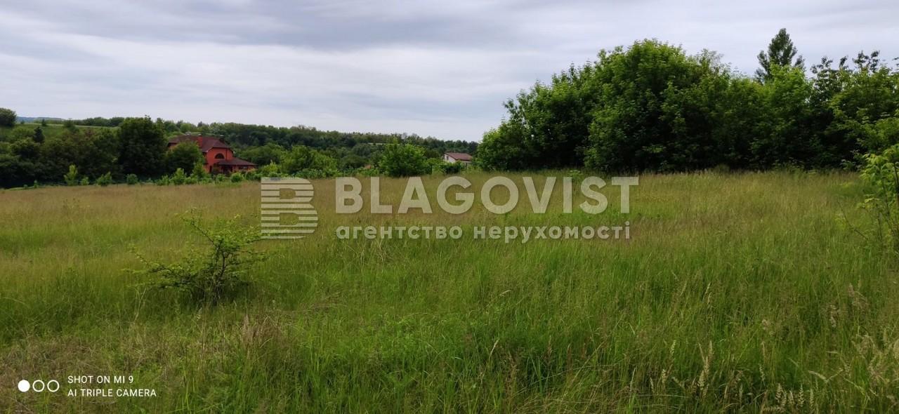 Земельный участок R-39655, Набережная, Старые Безрадичи - Фото 5
