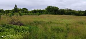 Земельный участок R-39655, Набережная, Старые Безрадичи - Фото 6