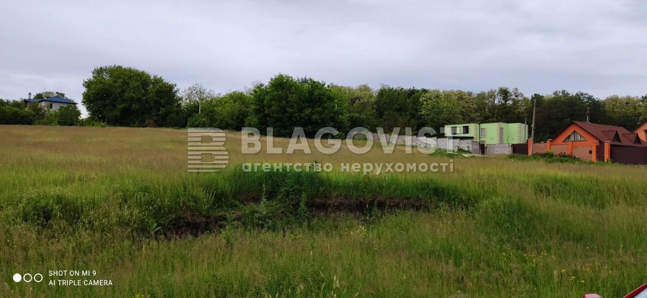 Земельный участок R-39655, Набережная, Старые Безрадичи - Фото 7