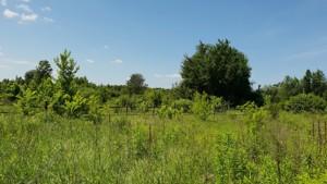 Земельный участок Соловьяненко, Козин (Конча-Заспа), R-39686 - Фото