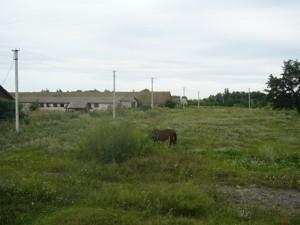 Земельный участок R-39679, Осыково - Фото 3