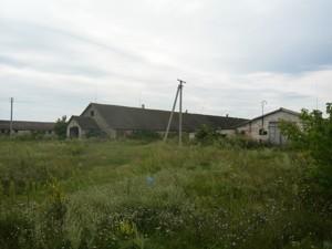 Земельный участок R-39679, Осыково - Фото 5