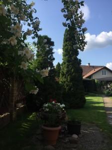 Дом Озерная, Подгорцы, R-39787 - Фото 11