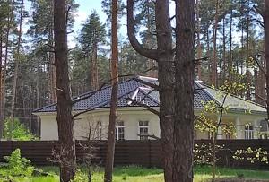 Будинок Буча (місто), P-19141 - Фото 7