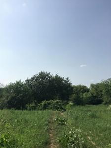 Земельна ділянка Козаровичі, H-50355 - Фото