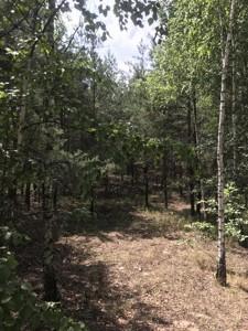 Земельный участок E-41178, Шервудская, Козин (Конча-Заспа) - Фото 3