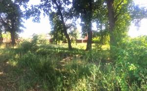 Земельный участок Лесная, Романков, P-29946 - Фото2
