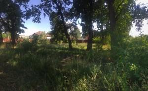 Земельный участок Лесная, Романков, P-29946 - Фото3