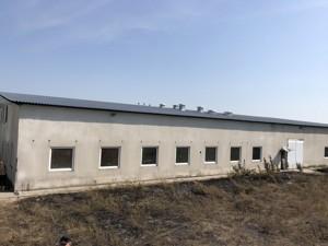 Производственное помещение, Ленина, Синяк, C-109733 - Фото